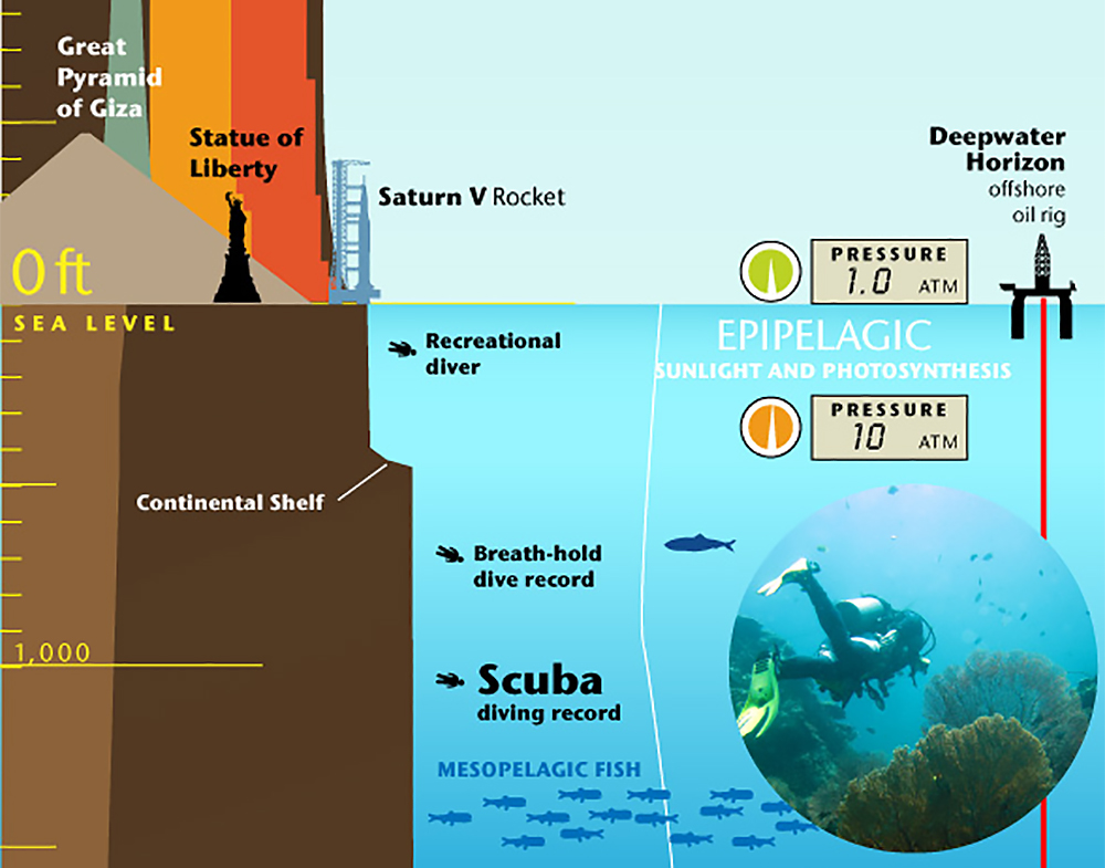 Infographic Mountain Elevation Amp Ocean Depth Recoil Offgrid