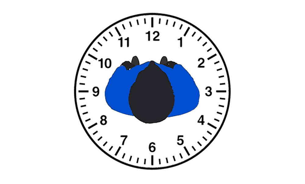 CCW concealed carry position clock